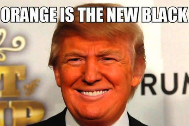 10 Donald Trump Memes To Get You In The Voting Mood ...