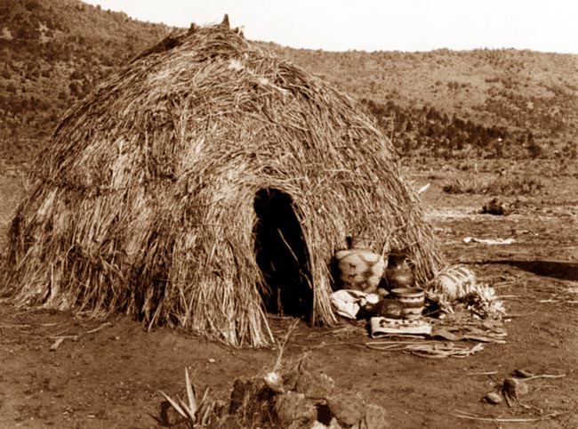 native-cry shed